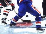 В 2014 году в Ярославле откроется хоккейное училище