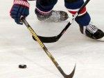 """Клуб НХЛ """"Финикс Койотс"""" останется в штате Аризона"""